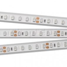 Светодиодная Лента RTW 2-5000PGS 24V Red 2x (3528, 600 LED) SL013404