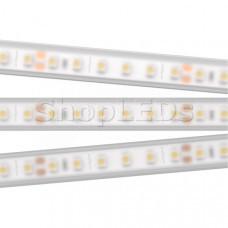 Лента RTW 2-5000PW 24V White 2x (3528, 600 LED,LUX)